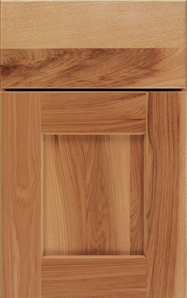 dover_rustic_hickory_shaker_cabinet_door_light