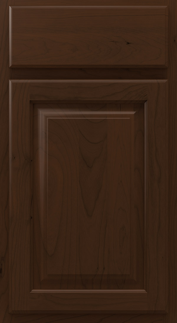 heritage_cherry_raised_panel_cabinet_door_bison