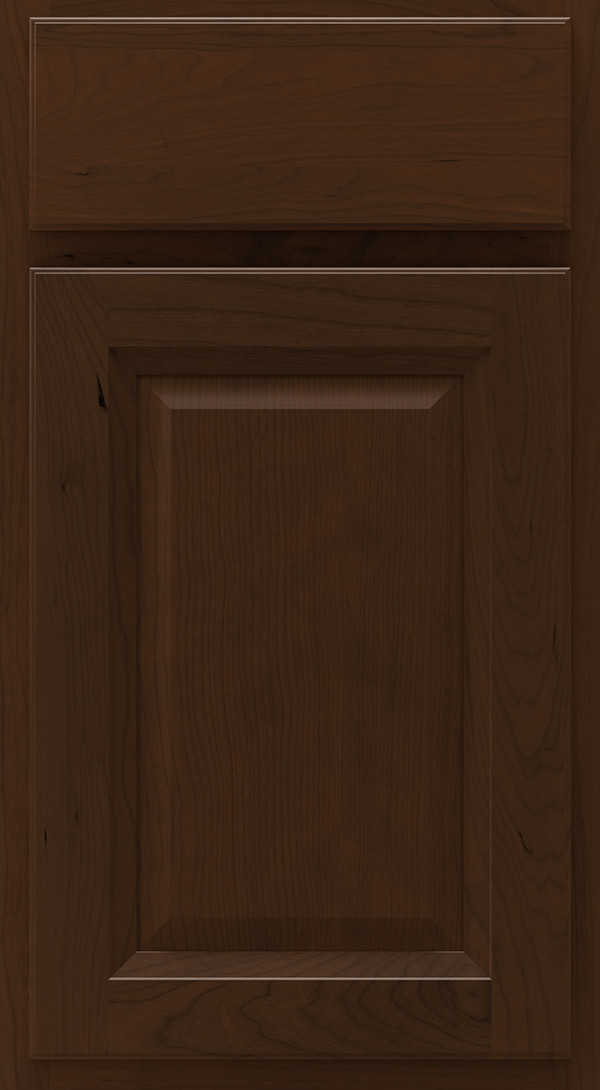lawry_cherry_raised_panel_cabinet_door_bison