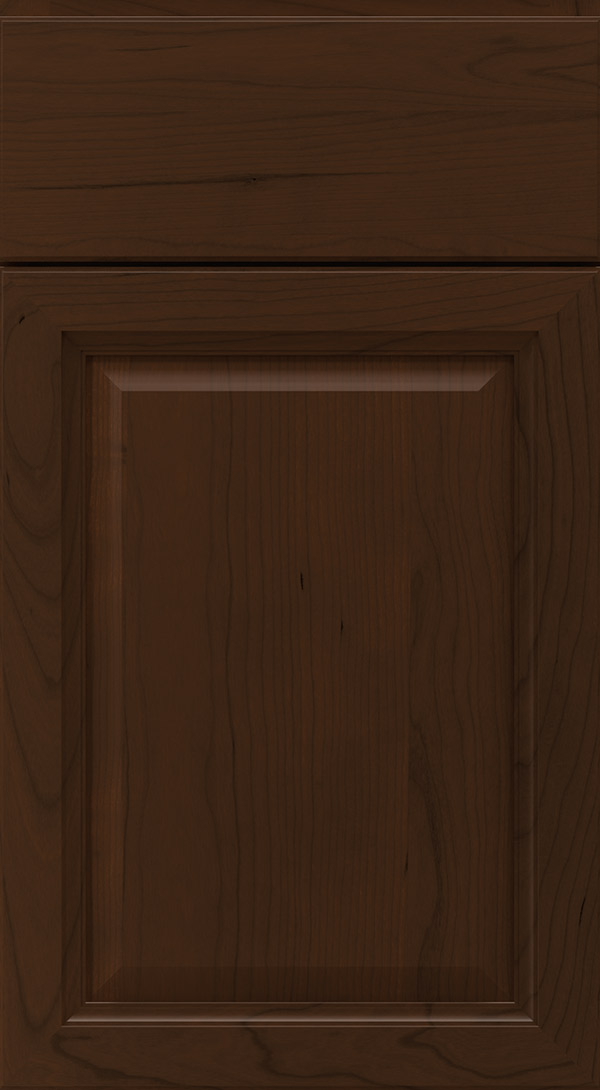 ogilby_cherry_raised_panel_cabinet_door_bison
