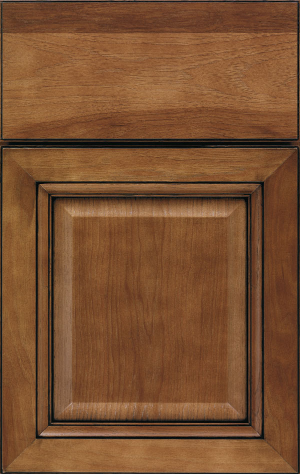 ogilby_hickory_raised_panel_cabinet_door_terrain_ebony