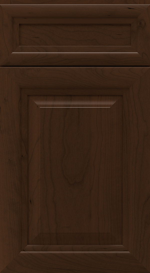 warner_5_piece_cherry_raised_panel_cabinet_door_bison