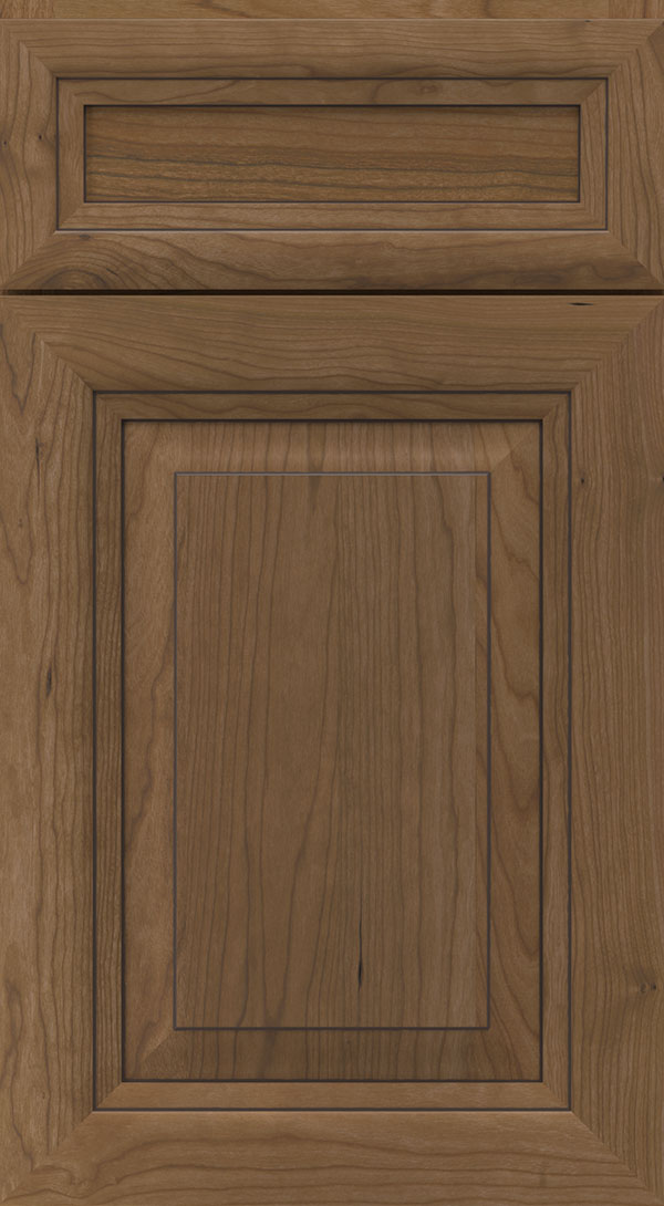 warner_5_piece_cherry_raised_panel_cabinet_door_karoo_cocoa